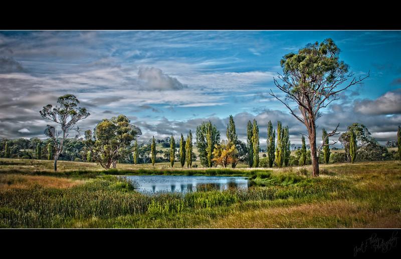 Ducks Lagoon