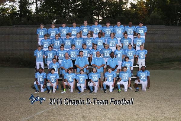 2016 D-Team