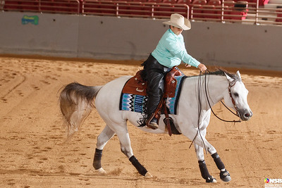 Thursday Novice Horse Set 9 81-90