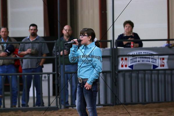 Llano County Jr Livestock Show 2015