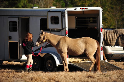 Sandstone Equestrian Dressage and Eventing, 8 JAN 10