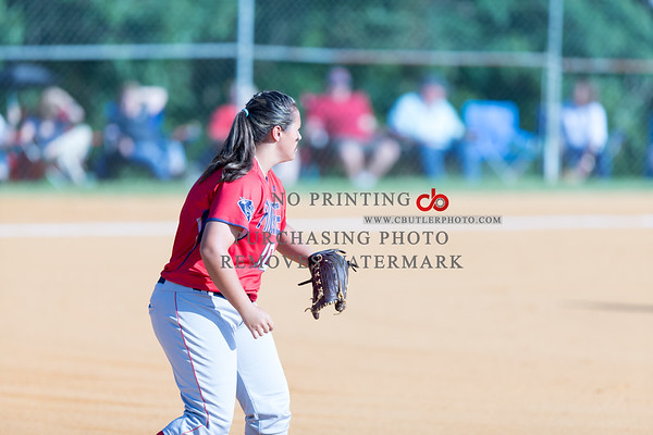Pine Grove New Site Slowpitch 2015