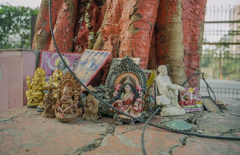 Delhi-kodak800_030.jpg