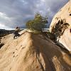 Vasquez Rocks I - 6