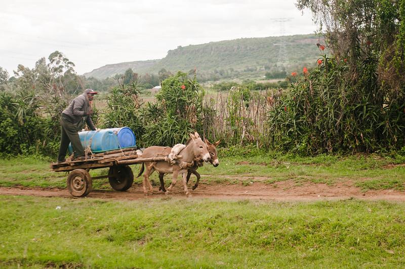 Nairobi2019-144.jpg