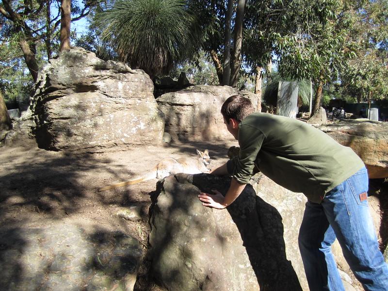 Sydney - Sydeny Zoo-57.JPG