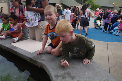 LB Aquarium with the Fongs 6-11