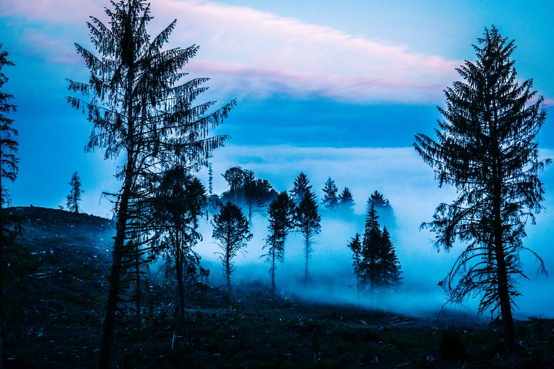 kaila_drayton_photography-9303.jpg