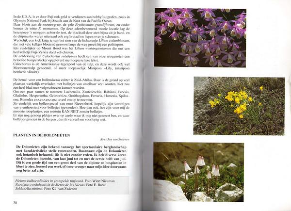 Planten in de Dolomieten, Nederlandse Rotsplanten Werkgroep Nieuwsbrief 64, August 2001, Kees Jan van Zwienen