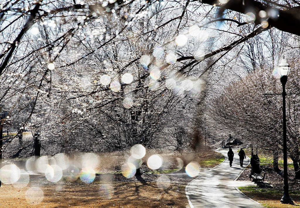 . Ice covers trees in Piedmont Park after a winter storm passed through Atlanta, Saturday, Jan. 7, 2017. Snow and sleet pounded a large swath of the U.S. East Coast on Saturday, coating roads with ice and causing hundreds of crashes. In Atlanta and parts of Georgia, people who were expecting a couple of inches of snow instead woke up to a thin coat of ice. (AP Photo/David Goldman)