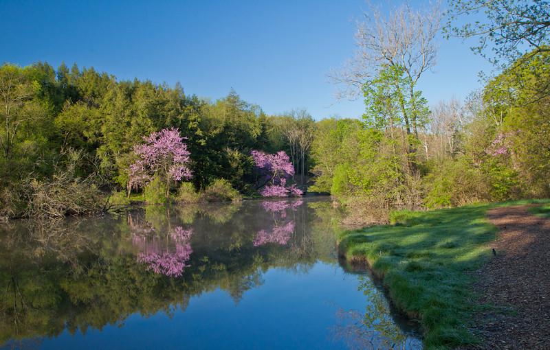 Spring13-0094.jpg