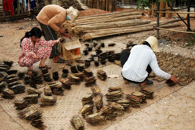 Vietnam 2008-048.jpg