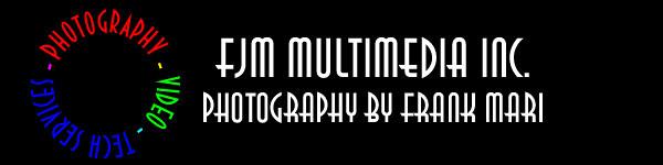 FJM logo design 1 2010_1113 final 150x600 copy.jpg