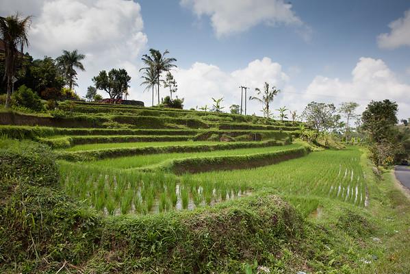 2015 Indonesia