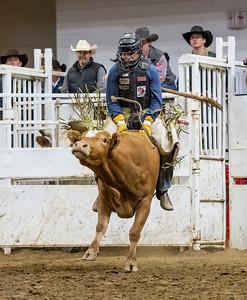 19MF Junior Bull Riding