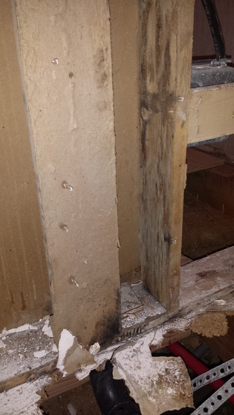 Angie Bathroom black mold images