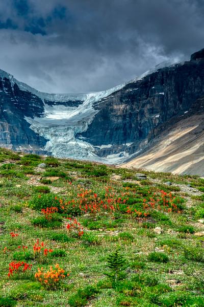 Banff NP 2019-2.jpg