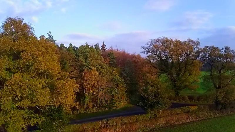 KBF Autumn Colours .jpg
