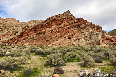 Red Rock Canyon, February 2017