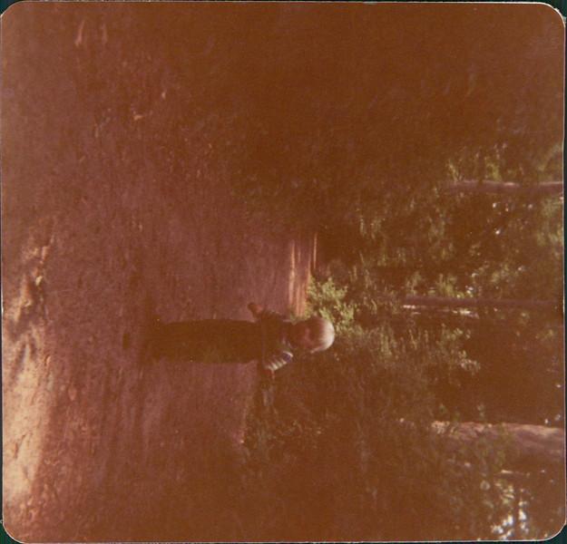 1977 Stay Scanned by Steve_00009A.jpg