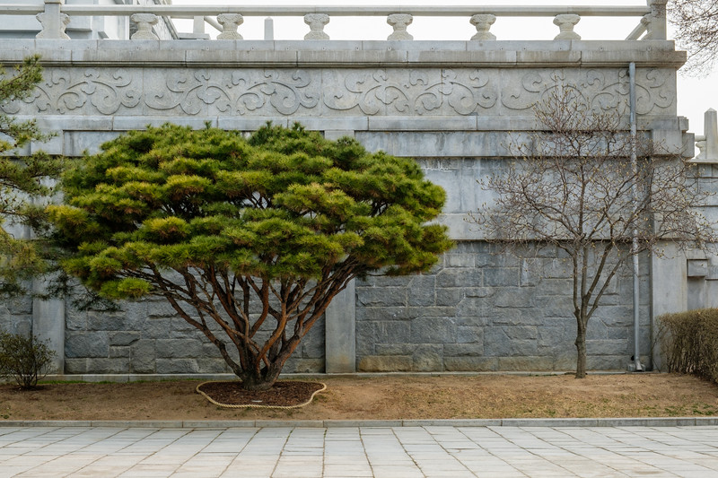 20170325-30 Gyeongbokgung Palace 083.jpg