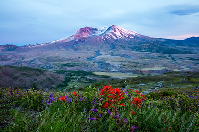 2016 May Mt St Helens