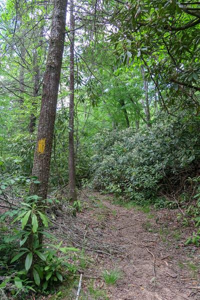 Riverside Trail -- 2,390'