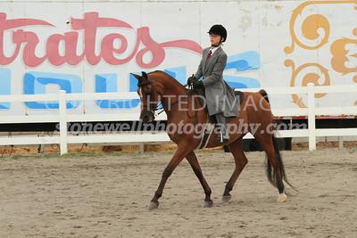 Saddle Seat Pleasure, 13