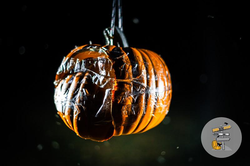 PumpkinHoller-2020-JK-1893.jpg