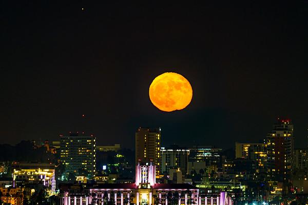 Harvest moon 2020