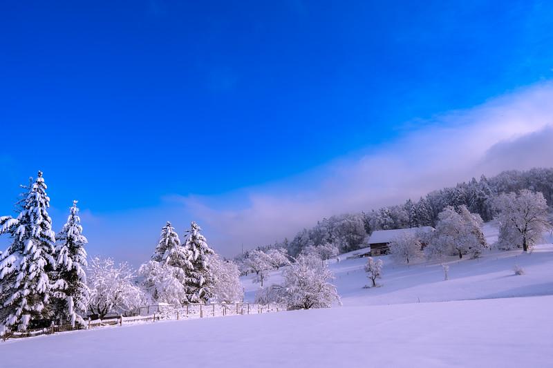 Winterthur-Winter-04344.jpg