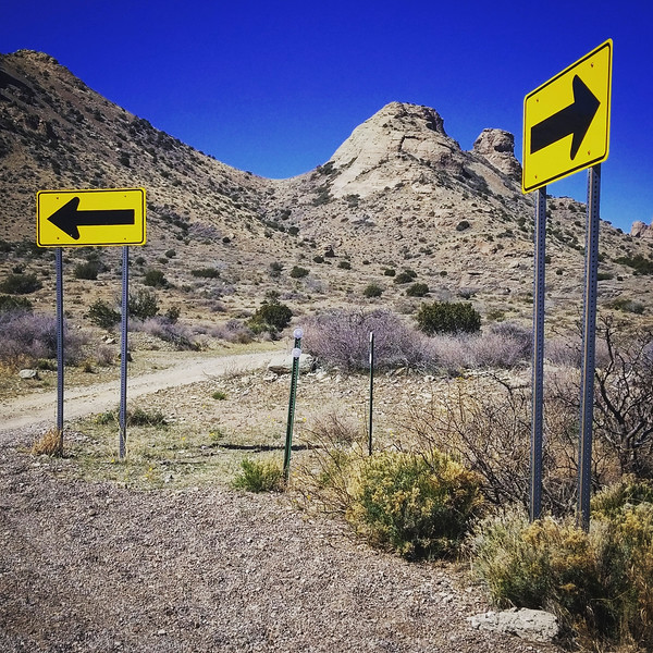 Two Roads Diverged in a Canyon . . .