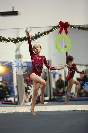 2013-2014 Women's Gymnastics