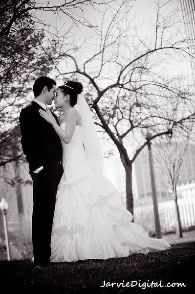 Bridals & Couple Pictures