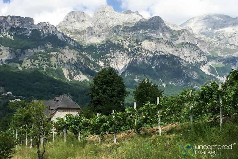 Farmhouse and Vineyards in Theth, Albania