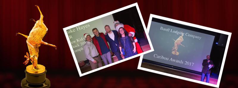 Webpage Content Image - Caribou Awards.png