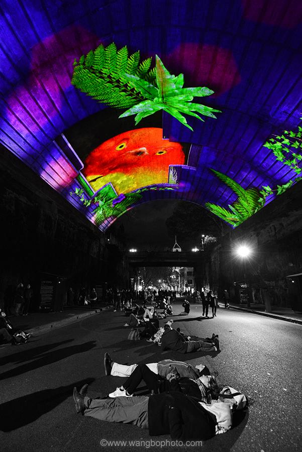 2015 vivid Sydney -- 2015动感活力悉尼灯光节 - 一镜收江南 - 清韵
