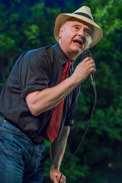 Arnie Fogal-Salute to the Music of Bob Dylan 2014-Wolfe Park, St. Louis Park
