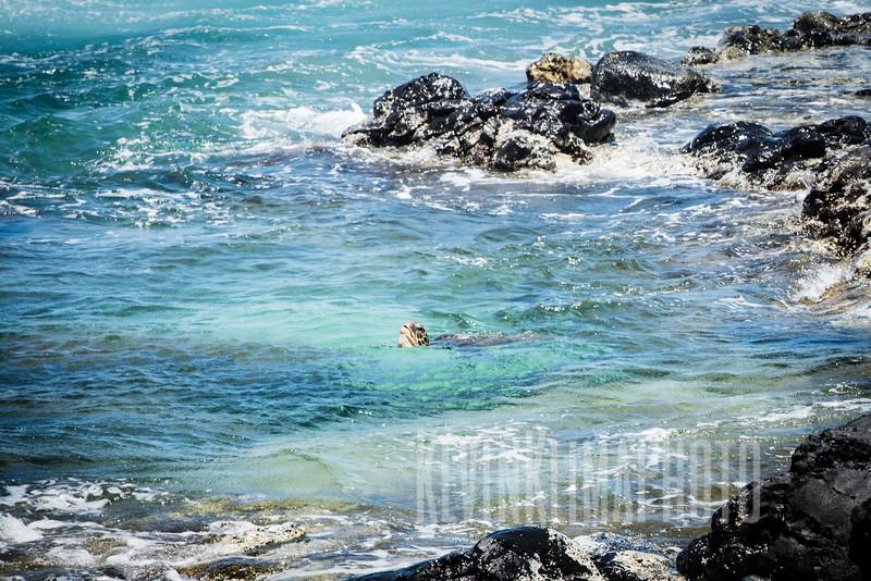 Maui2016-137.jpg