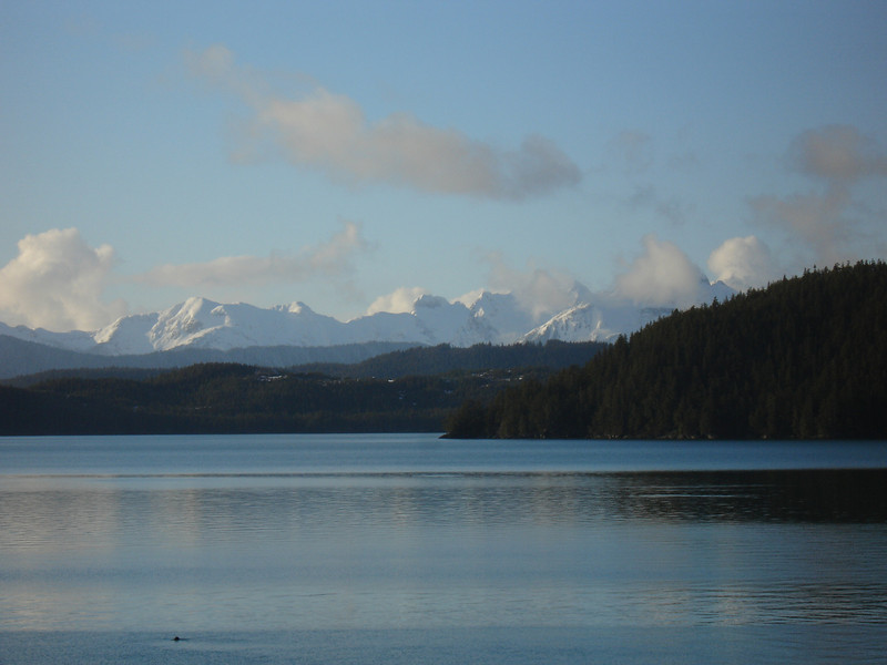 Alaska 2008 198.jpg