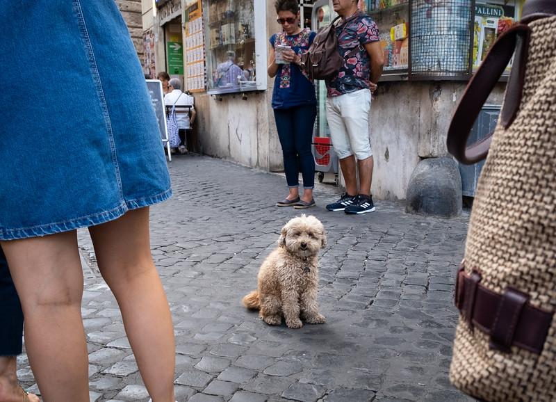 Rome-27.jpg