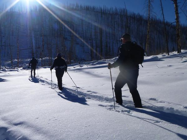 Jan 20 - 26, 2013