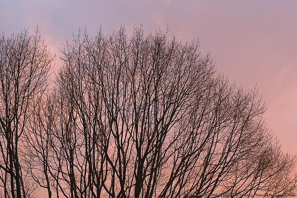 061130 Woodway Sunset Snapshots
