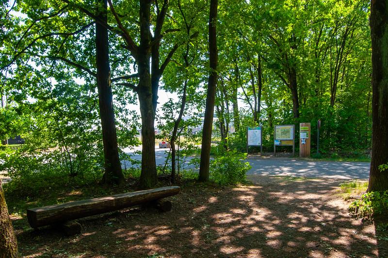 Nationaal Park Hoge Kempen - Duinengordel, omgeving Donderslag 58.jpg