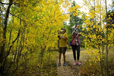 Photos: Fall colors light up Boulder County