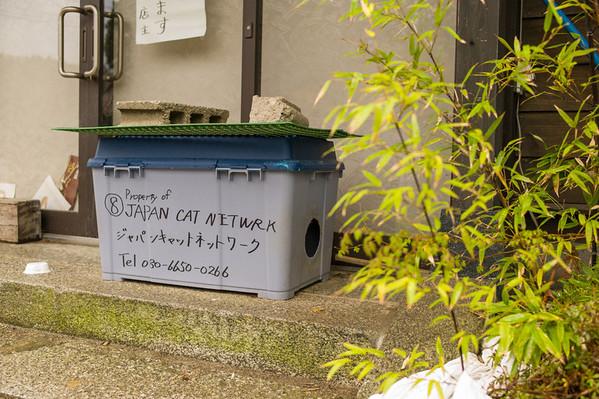Safecasting Fukushima in GW