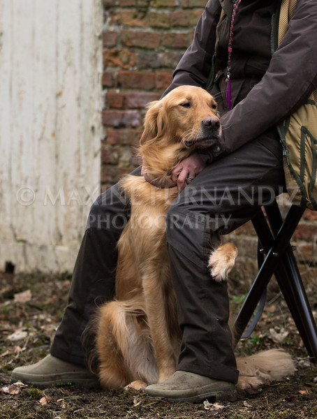 Dogs-5678.jpg