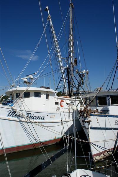 Campaign, Shrimp Boat 038.jpg