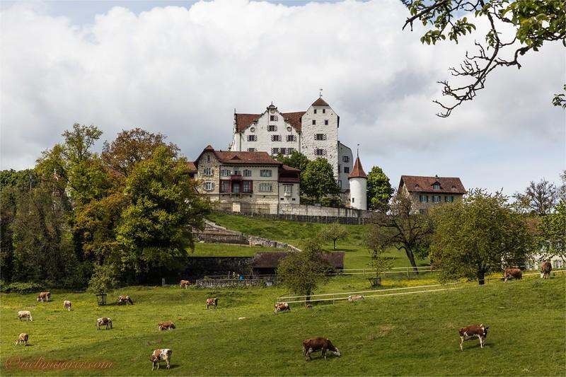2017-05-03 Schloesser Aargau - 0U5A5684.jpg