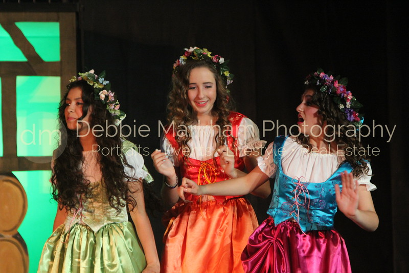 DebbieMarkhamPhoto-Opening Night Beauty and the Beast308_.JPG